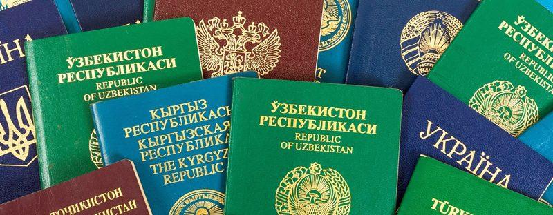 34%-of-hnwi-obtained-alternative-citizenship-or-passport-already